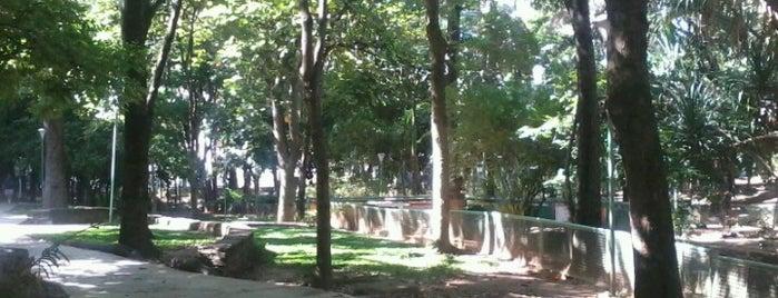 Parque Miguel José Sanz is one of Plazas, Parques, Zoologicos Y Algo Mas.