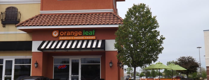 Orange Leaf Frozen Yogurt is one of Celebrity Hangouts.