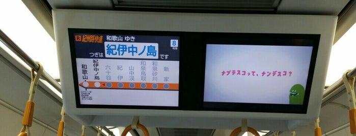 紀伊中ノ島駅 (Kii-Nakanoshima Sta.) is one of 阪和線.
