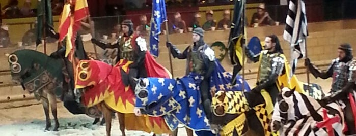 Medieval Times is one of Best places for families.