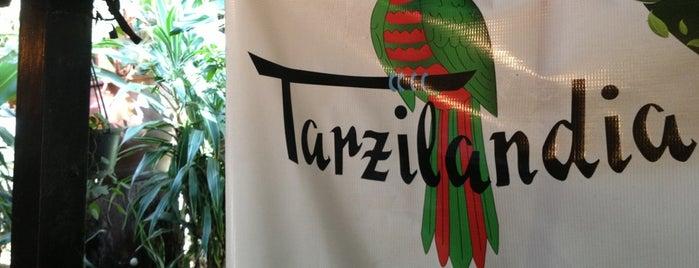Tarzilandia is one of Lugares Conocidos Caracas.