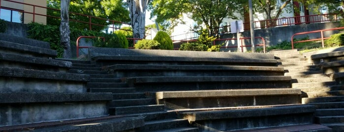 Dr. Blanche S. Lavizzo Park is one of Seattle's 400+ Parks [Part 1].