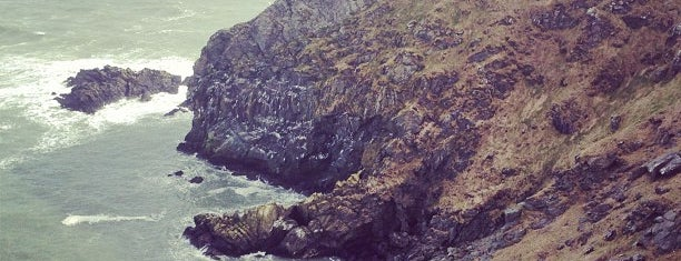 Howth Cliff Walk is one of Nipping About.
