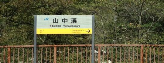 山中渓駅 (Yamanakadani Sta.) is one of 阪和線.
