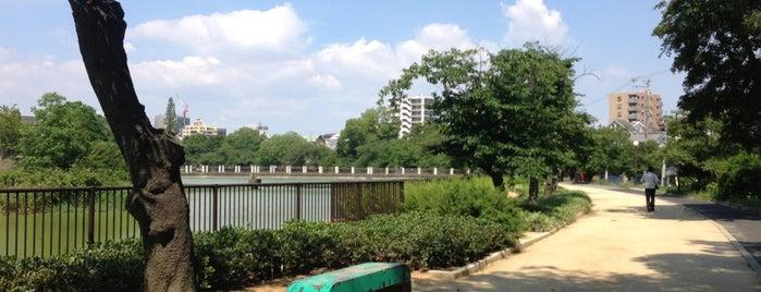 万代池公園 is one of 公園.