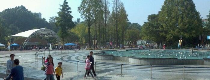 어린이대공원 (Children's Grand Park) is one of Seoul City Badge - Lucky Seoul.