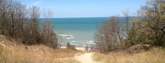 Indiana Dunes State Park is one of Indiana State Parks and Reservoirs.