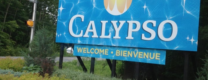 Calypso Theme Waterpark is one of Ottawa.
