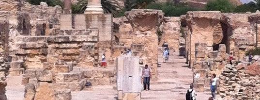 L'Acropolium de Carthage is one of Tunis City Badge - Bab el Bahr.