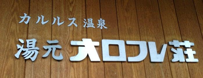 湯元 オロフレ荘 is one of 地元観光案内.