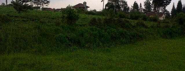 Perkebunan Teh Lembang is one of All-time favorites in Indonesia.