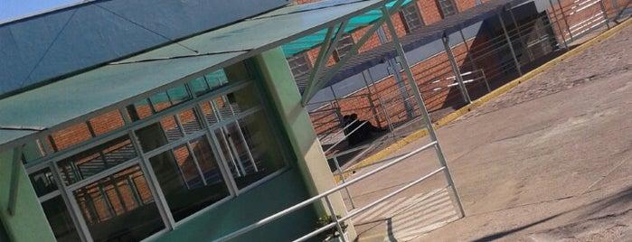 Colégio Marista Graças is one of Casa.