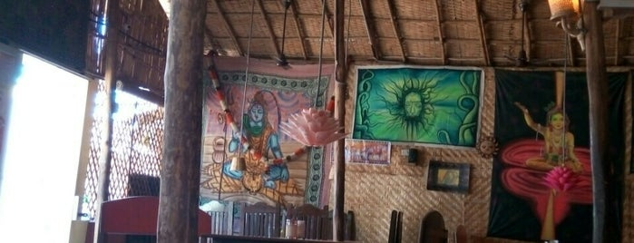 Mango Tree Restaurant is one of India places to visit.