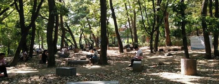Yonsei University 청송대 is one of 연세대학교, Yonsei Univ..
