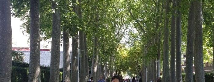 Paseo de la Senda is one of Best places in Vitoria-Gasteiz, España.