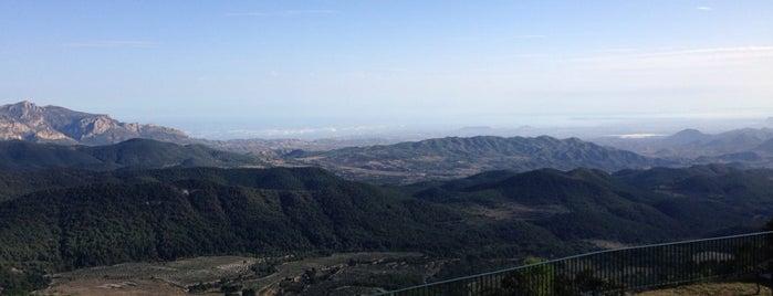 Pou De La Neu is one of los mejores sitios para comer en Alicante.