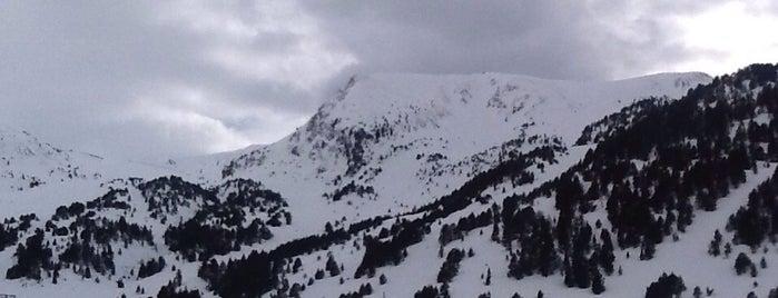 Ski Area is one of Ski Bum.