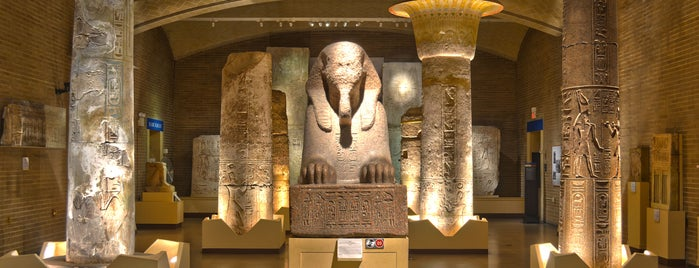 University of Pennsylvania Museum of Archaeology and Anthropology is one of Local stuff to do.