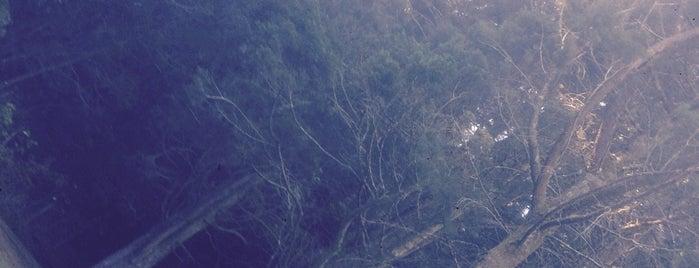 Bosque Del Nino is one of Best places in Grecia, Costa Rica.