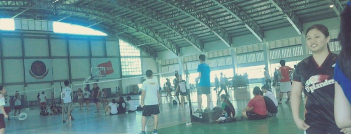 Edwin Bingham Copeland Gym (UPLB Copeland Centennial Gymnasium) is one of 1.