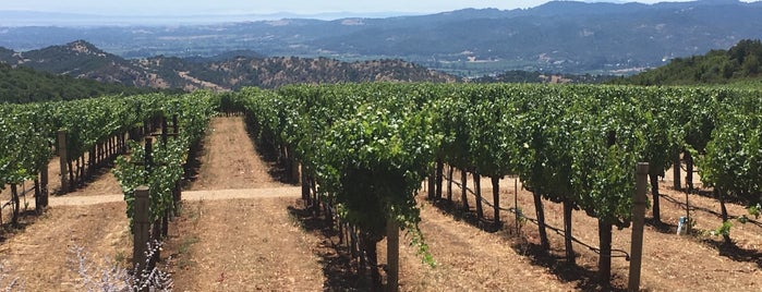 Continuum is one of Wineries to visit.