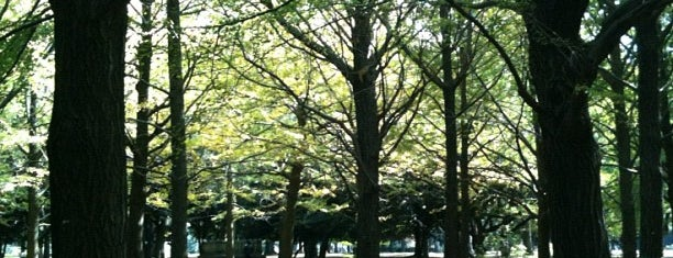 代々木公園 (Yoyogi Park) is one of Japan must-dos!.