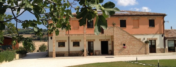 Agriturismo Le Bucoliche is one of agriturismi marche.