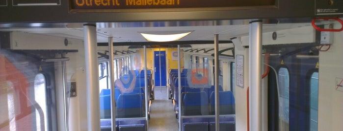 Station Utrecht Maliebaan is one of Public transport NL.