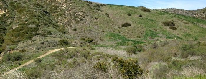 El Moro Canyon is one of Hike LA.