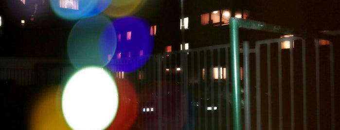 Čekovací muzejní noc v Ostravě 2012