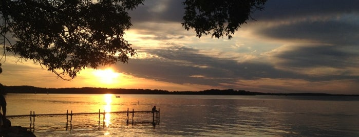 Favorite places in Madison, WI