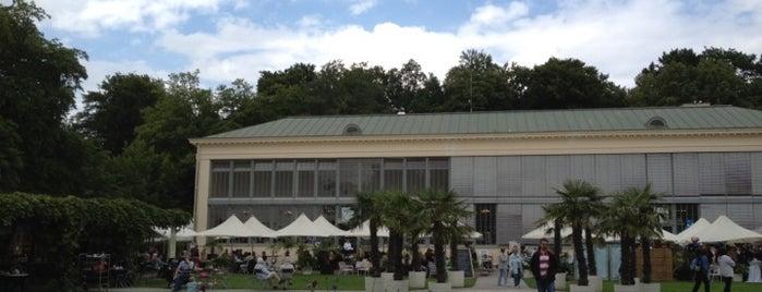 Schlosscafé im Palmenhaus is one of Guía de Munich.