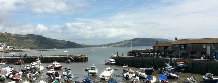 Lyme Regis is one of Top picks for Other Great Outdoors.