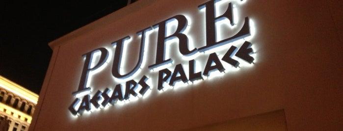 PURE Nightclub is one of Badge list.