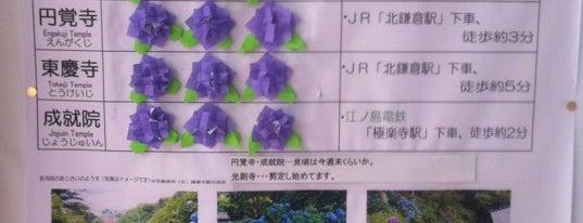 北鎌倉駅 展示コーナー is one of ☆.