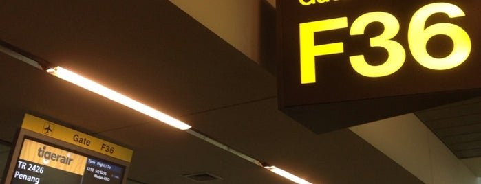 Gate F36 is one of SIN Airport Gates.