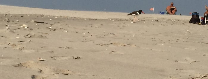 Breezy Point Beach is one of MISSB.