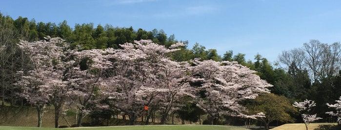 桜の宮ゴルフ倶楽部 is one of ゴルフ場(茨城).