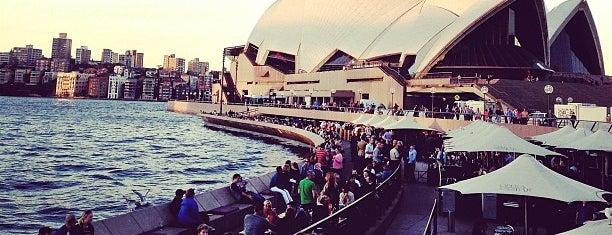 Opera Bar is one of Sydney Scene.