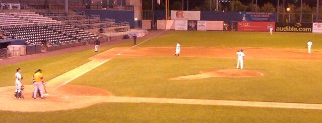 Newark Bears Riverfront Stadium is one of Baseball Venue NY.
