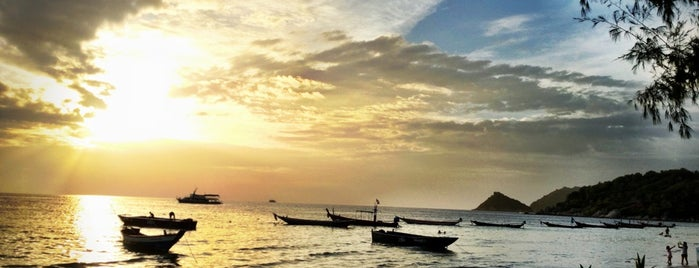 Fizz Beach Lounge is one of The 20 best value restaurants in Ko Tao, Thailand.
