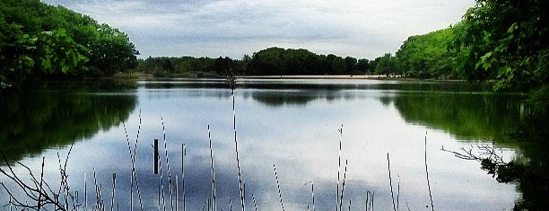 Cheesequake State Park is one of parks.