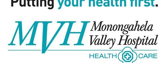 Monongahela Valley Hospital is one of Hospital.
