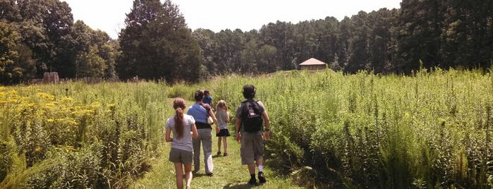 Town Creek Indian Mound is one of North Carolina.
