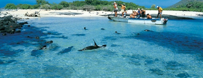 Galapagos Islands is one of ATW.