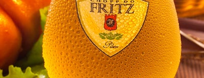 Chopp do Fritz is one of Henri's TOP Bars!.