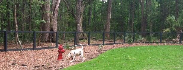 Carolina Bay Dog Park is one of Dogs.