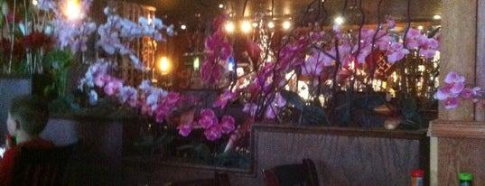 Fuji Japanese Restaurant Edgewater Md