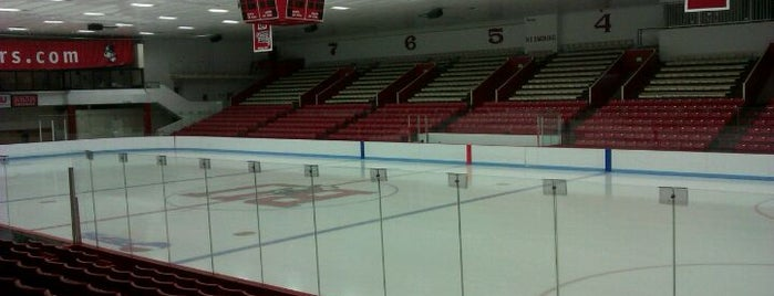 Walter Brown Arena is one of Chi Phi campus spots.