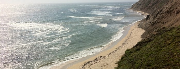 Mavericks Beach is one of Top 10 Surf Breaks in the USA.